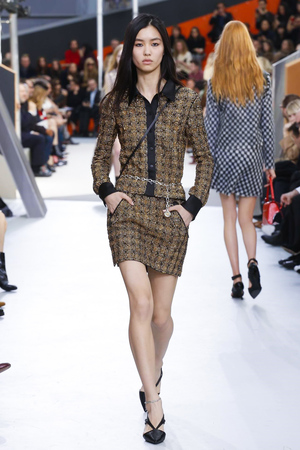 Louis-Vuitton-RTW-FW15-Paris-3045-1426066041-thumb
