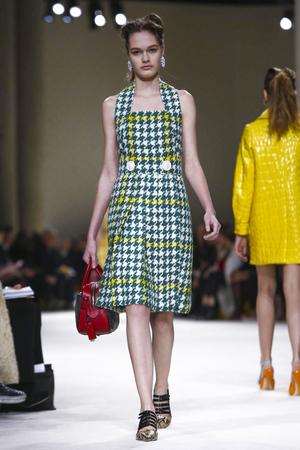Miu Miu RTW Fall Winter 2015 Paris